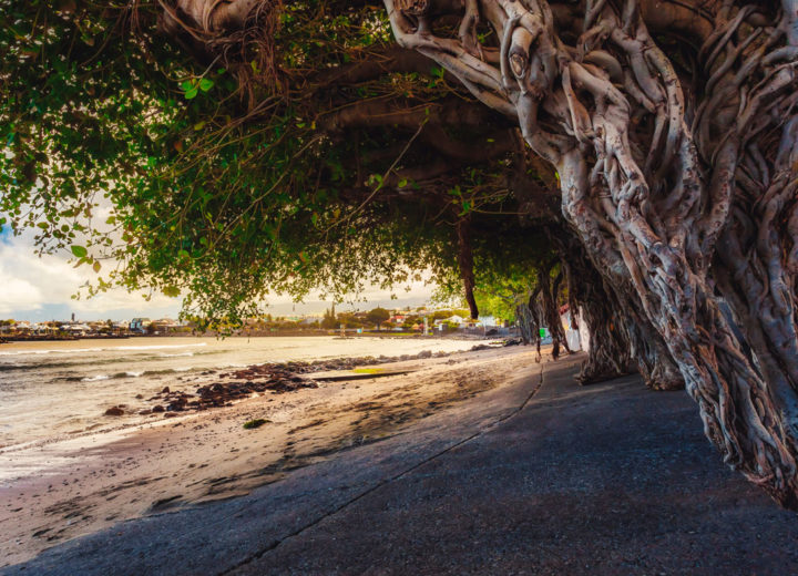Découvrir l'île de La Réunion la ville de Saint-Pierre